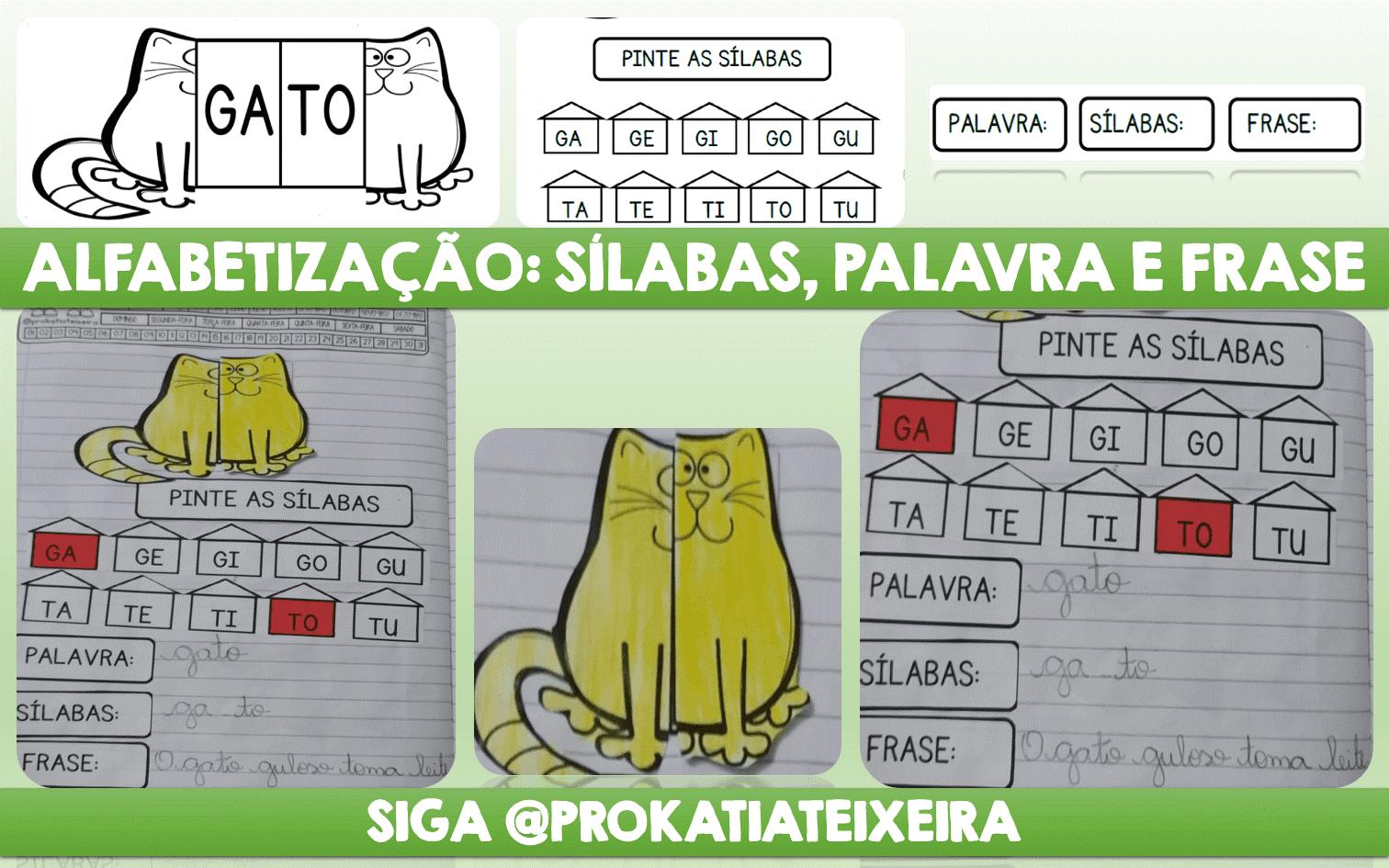 Alfabetização palavra gato: sílabas, palavra e frase