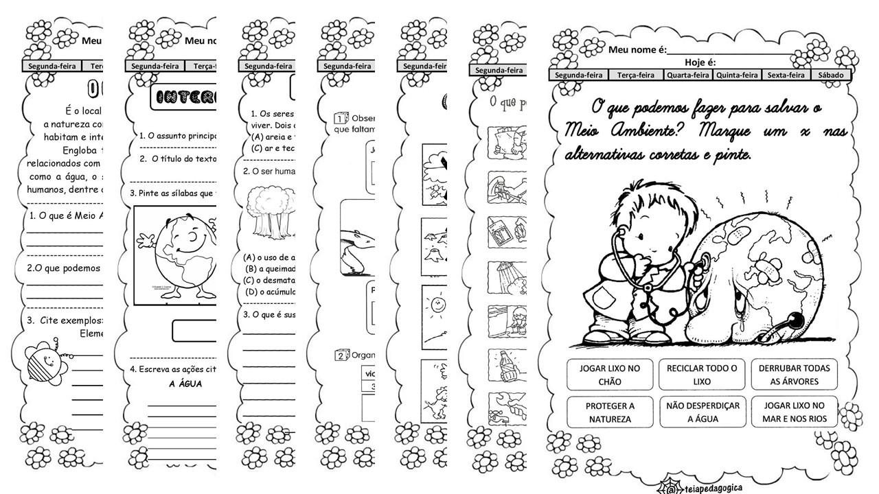 Atividades sobre Meio Ambiente em PDF
