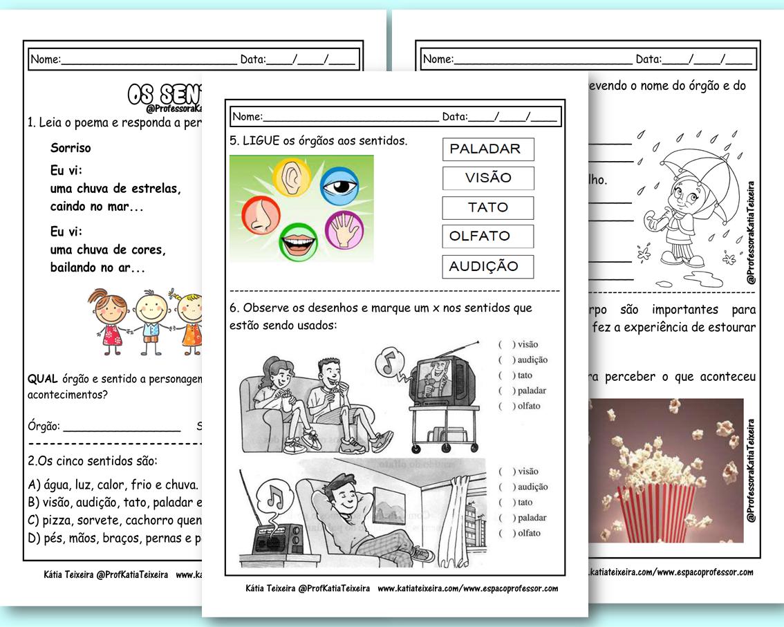 Atividades de Ciências 3º ano –  Os cinco sentidos 3º ano em PDF